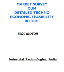 Project Report on BLDC Motor