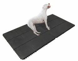 Dog Anti Skid Mat