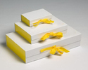 Magnetic Folding Box