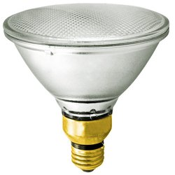 GE Par Halogen Lamp