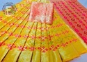 Banarasi Weaving Meena Patola  Saree
