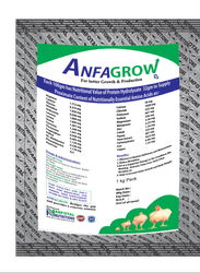 Poultry Layer Growth Promoter Supplement (Anfagrow Dx)