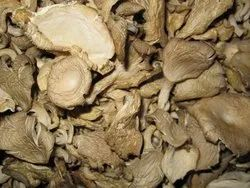 Dry Oyster Mushroom, Packaging: Plastic Bag or Polythene Bag, No Artificial Flavour