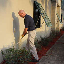 Pest Control Service For Garden