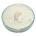 Titan Biotech Sodium Butyrate Powder