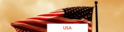 Abroad In The Usa Services