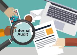Specific Audit Services