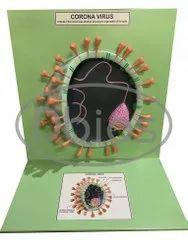 Corona Virus Model