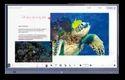 Quriosity Display Platform & Sensor AI