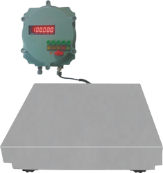 Flame Proof Platform Scale