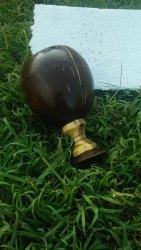 Brown Coconut Shell Wine Glass