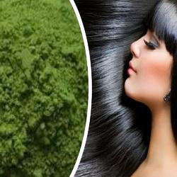 Henna plant Essence Black Hair Dye Powder