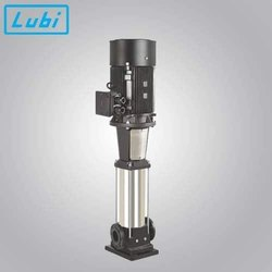 Lubi LCR 2-15 for 500 LPH RO Plant