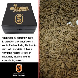 Agarwood Chip.SP-030