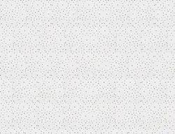 USG - Starfish - Gypsum Ceiling Tile