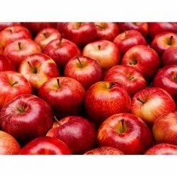 A Grade Kashmir Fresh Shimla Apple, Packaging Type: Carton, Packaging Size: 10 Kg