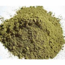 Ocimum Sanctum Herbal Extracts