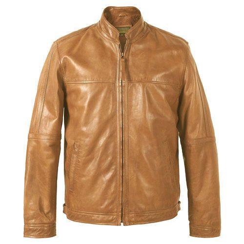Mens Stylish Fox Leather Jacket Gents Leather Jackets प र ष