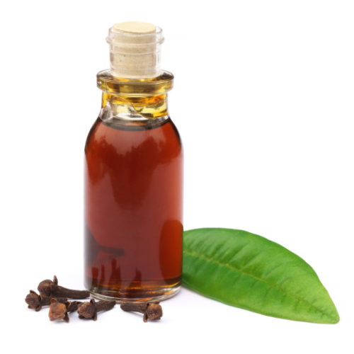 Medagaska Eugenia caryophyllata 100% Pure Clove Leaf Oil - Top Grade, For Therapeutic