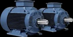 Three Phase 0.5 HP Havells Induction Electric Motor