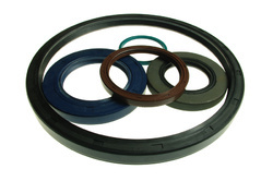 Oil Seals High Temperature
