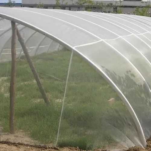 Polyhouse Fabrication Service - Agriculture Ventilation