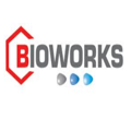 BWI Project India Private Limited