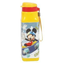 Disney Cool Leader Insulated Water Bottle