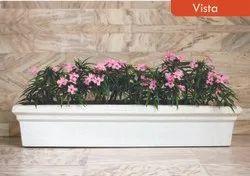 Rectangle Flower Plant