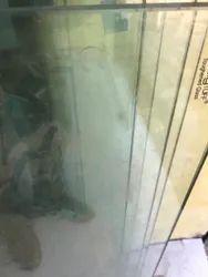 Door Toughened Glass