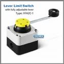 FFH Type Lever Limit Switch