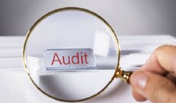 Consulting Firm Business Audit