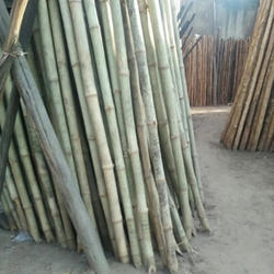 Bamboo Pole at Best Price in India