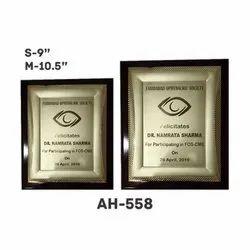 AH - 558 Premium Award