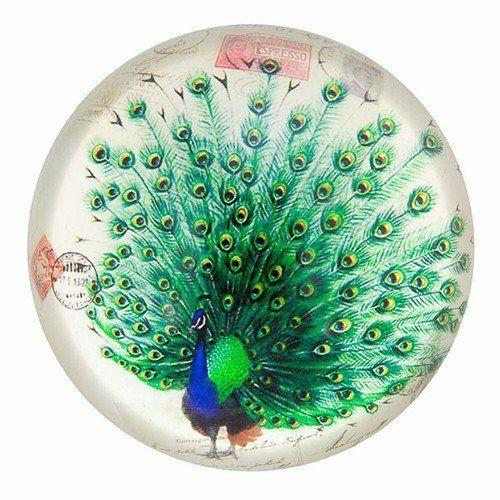 Vintage Peacock Drawing Glass Paperweight