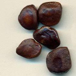 Approx 24 Months Brown Tamarind Seeds, PP Bag, Packaging Size: 1 Kg