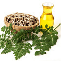 Indian Moringa Seed Oil