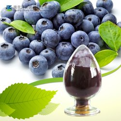 100% Bilberry Extract
