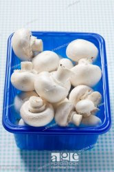 Anywhere in India Button Mushroom, Packaging Type: Tray packing, Packaging Size: 200 g,1 kg