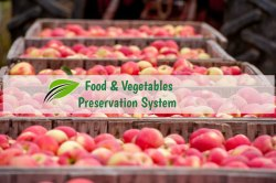 Fruits And Vegetable Preservation System