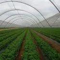 White Agro Shade Net
