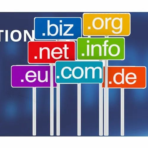 Static Domain Name Registration Services, Installation Provided: Free, India