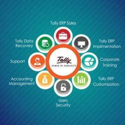 Online Tally Software Services