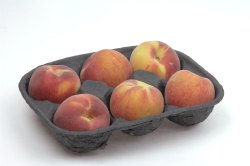 6Pc Fruit Packaging Paper Pulp Tray