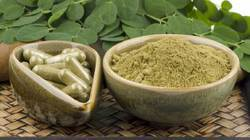 Moringa Pod Powder