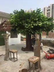 Artificial Banyan Tree