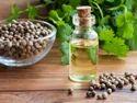 Coriander Oils