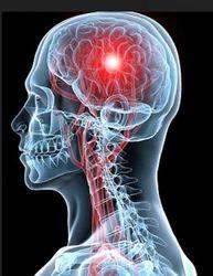 Neuro Muscular Rehabilitation Treatment Service