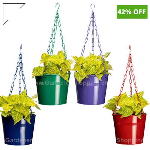Round Metal Hanging Planters Red Blue Purple And Green 4 High Pots For Home Rs 110 Piece Id 22140927212