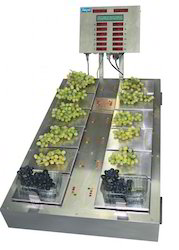 Grape Weighing Scale